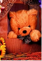 "Hardcover DIN A6 blanco ""Teddy"""